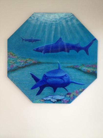 Sharks final